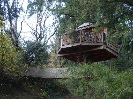 Cabanes als Arbres : Otra cabaña