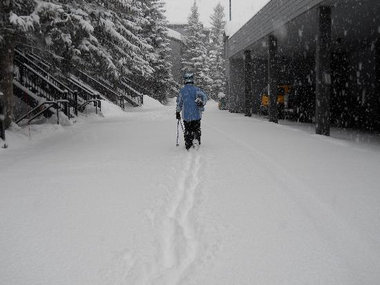 La Casa on the Mountain: Pow on the way to Gondola 1-15-2011