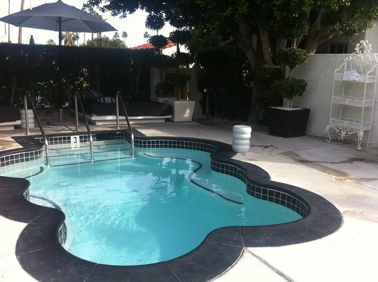 Avalon Hotel and Bungalows Palm Springs : Hot tub with jets