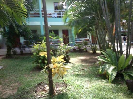 Kasemsuk Guesthouse: View from the garden