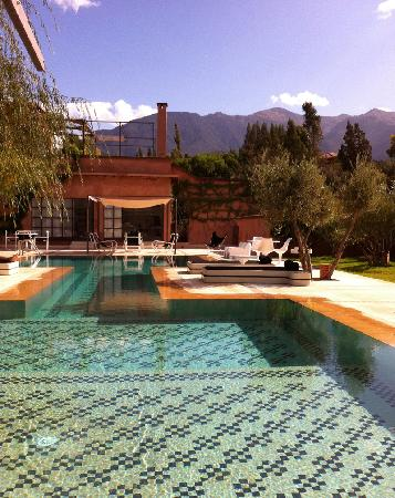 Domaine Malika: The pool