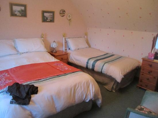 Glengolly Bed and Breakfast: Our room