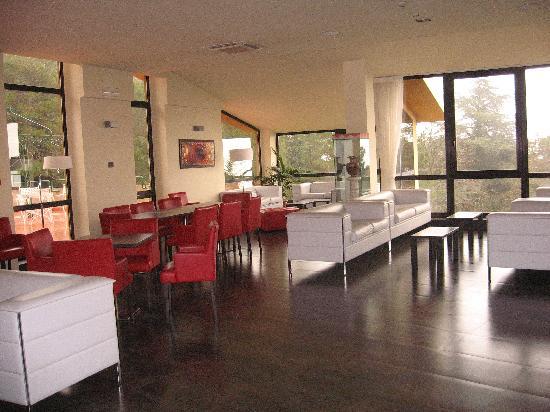 Hotel Colle della Trinita: sala bar/lettura
