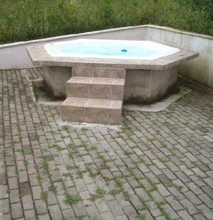 Hotel Desire Costa Rica: Hot tub with weeds growing through pavement