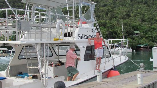 Hackshaw's Boat Charters: Tied up in Marigot Bay