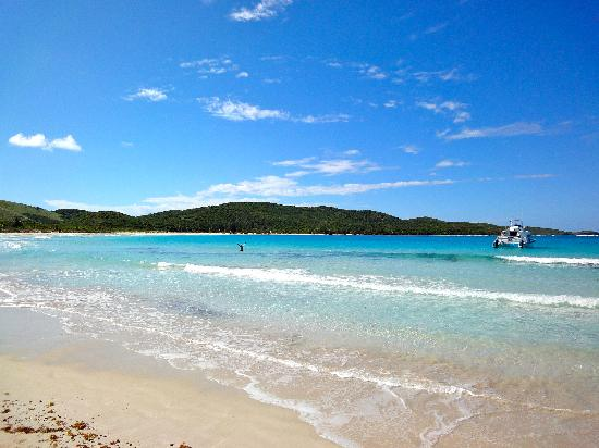 Flamenco Beach Culebra Pr Picture Of Wyndham Grand Rio Mar Puerto Rico Golf Amp Beach Resort
