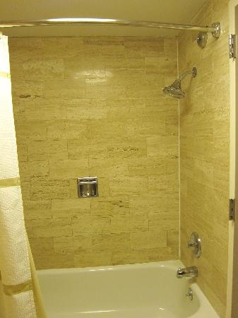 Ann Arbor Marriott Ypsilanti at Eagle Crest: Shower has nice surfaces and a good Speakerman brand shower head that worked well.  They added t