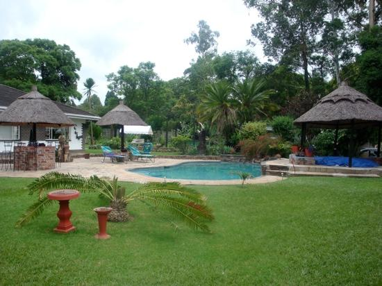 Sunshine Guest House : The garden