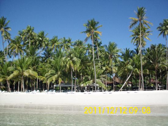 Henann Resort Alona Beach: the beach side