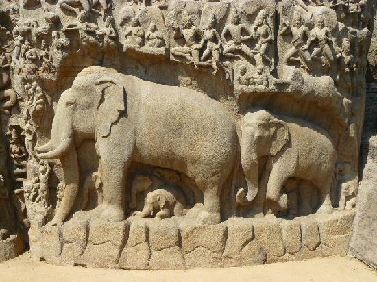 Sea Shore Temple: Rock carving Mamallapuram