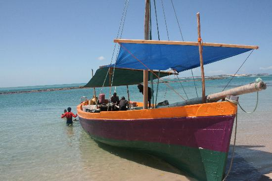 Sailaway Dhow Safaris: Our chariot!