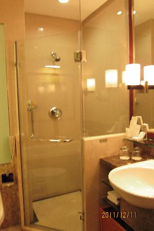 Golden Diamond Hotel: Standing shower room