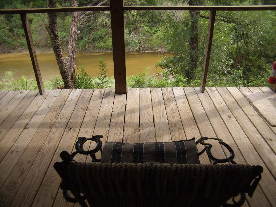 Paluxy River Bed Cabins: This is the view from the porch... watching the turtles & wildlife was so much fun!