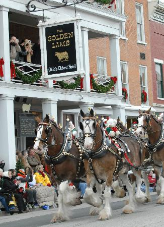 Warren County, OH: Clydesdales trot in front on the Golden Lamb at the Lebanon Horse-Drawn Carriage Parade