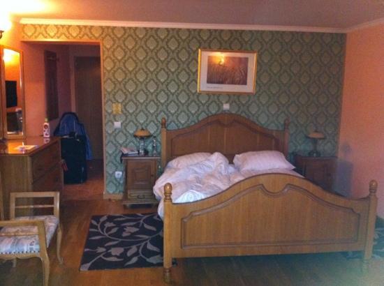 Korona Hotel: exec room