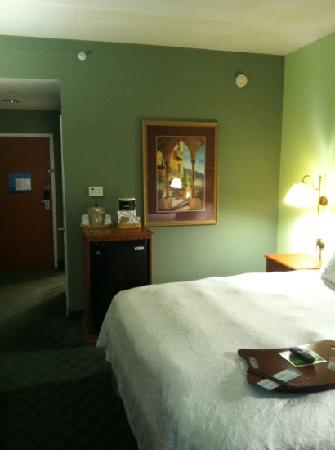 Hampton Inn Winter Haven: King size bed Room
