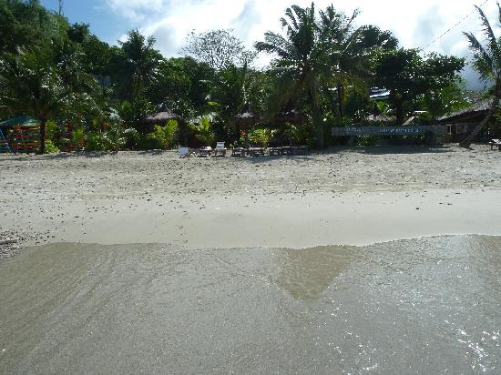Tamaraw Beach Resort: Strand