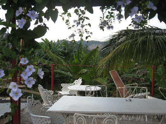 Villa Jorge y Ana Luisa: Rooftop Terrace