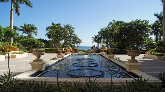 family pool picture of the ritz carlton key biscayne. Black Bedroom Furniture Sets. Home Design Ideas