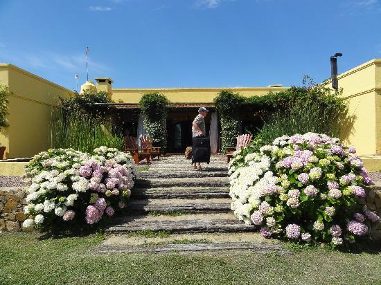 Casa Los Jazmines: entrance