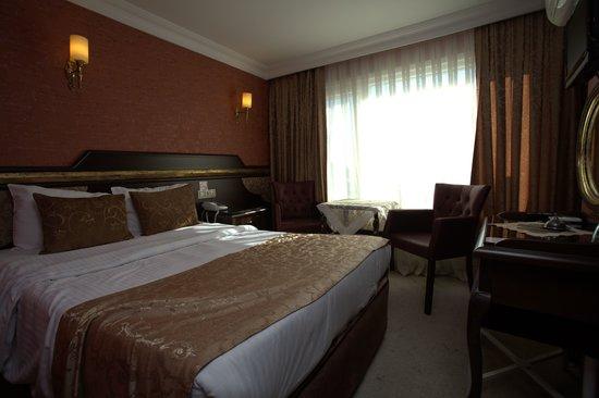 Sultanahmet Park Hotel: STANDART ROOM