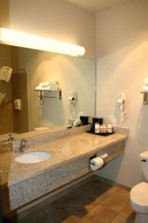 Timber Creek Inn & Suites: Bathroom / sink area