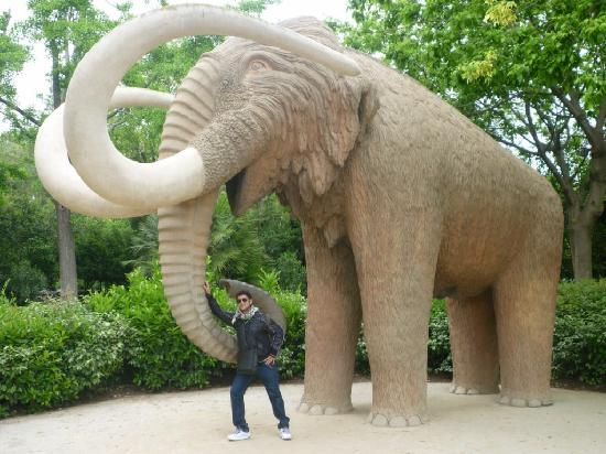 Barcelona, Spain: ELEPHANT MONUMENT