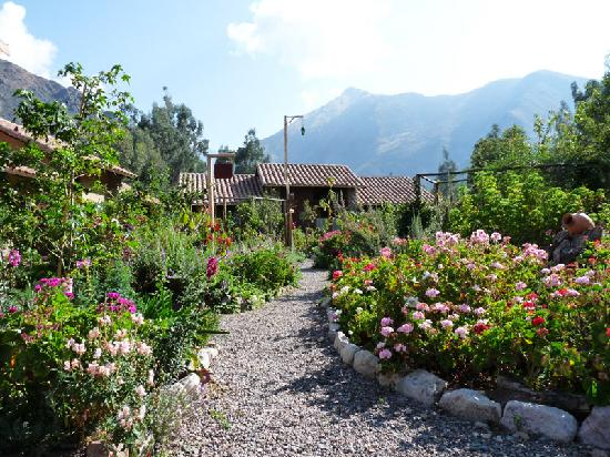 Casa Colibri eco-Lodge: the lodge