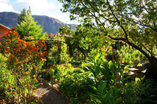 Casa Colibri eco-Lodge: zen garden