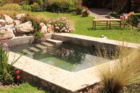 Casa Colibri eco-Lodge: plunge pool (if you're brave enough!)