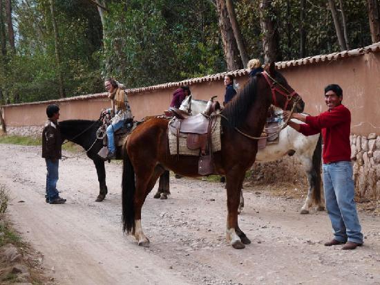 Casa Colibri eco-Lodge: horseriding!