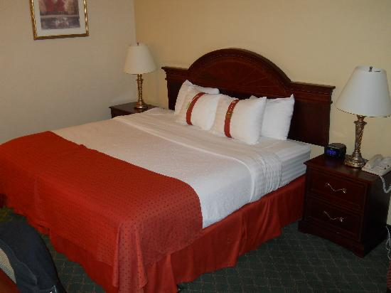 Holiday Inn Winnipeg South: bed