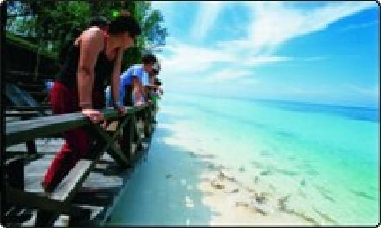 Dive The World: Lankayan Resort