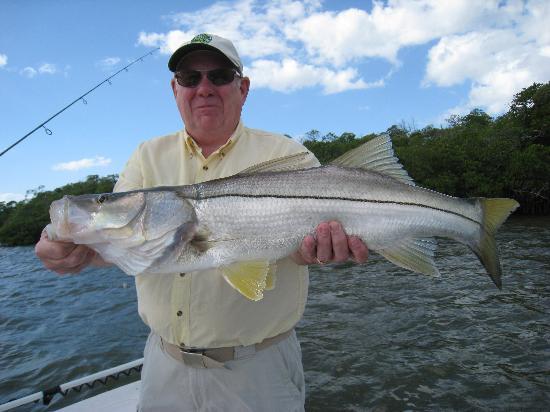 Fish The Salt: Estero bay snook