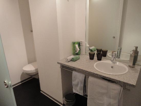 Alphotel Eiger: Lobhorner sink and toilet