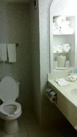 Holiday Inn Express Greenville Downtown : Bathroom