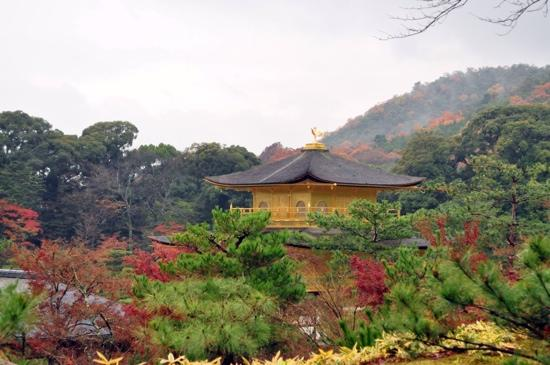 Kyoto, Japan: Kinkakuji in early December