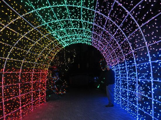 Lighted tunnel entrance to the gardens - Picture of Cambria Pines ...