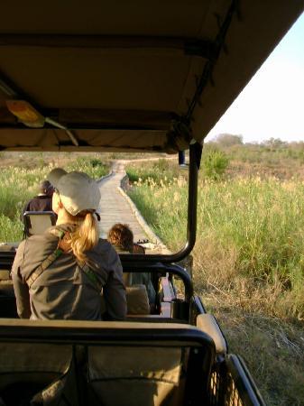 Lion Sands - Tinga Lodge: Rickety Bridge ahead