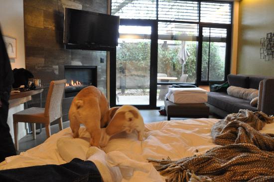 Bardessono: King-Spa suite