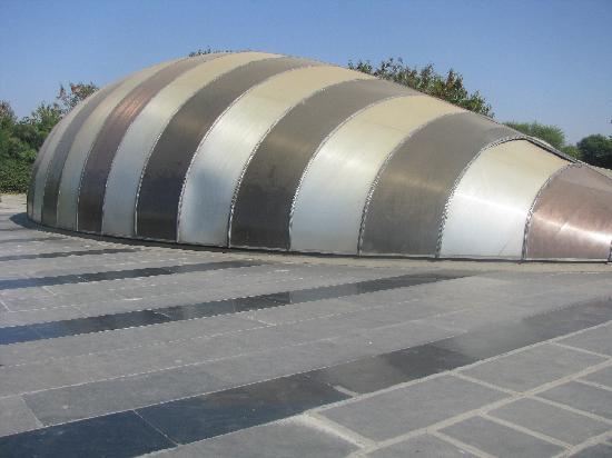 Gujarat Science City: elecrodome