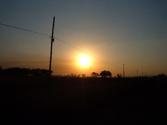 Ekala Guest Farm and Eco Tours: A beautiful view from the farm of the sunset