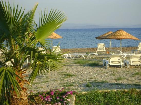 Hotel Silvanus: inanılmaz bi sahil