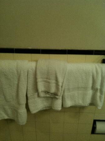 Stanford Inn: Nasty Towels