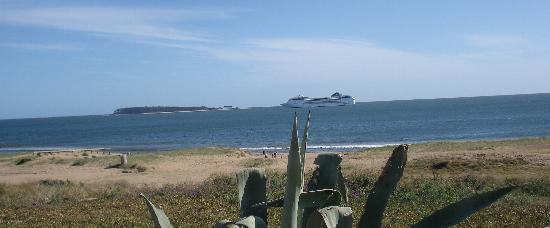 Playa mansa pda 26 - Punta del Este