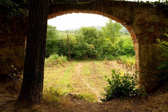 Valtice Castle grounds