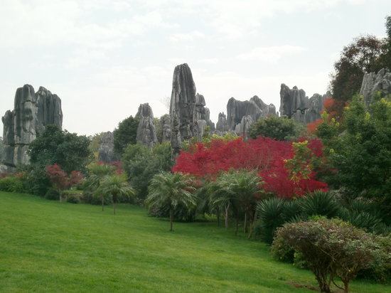 Forêt de pierre : stone forest with changing colours