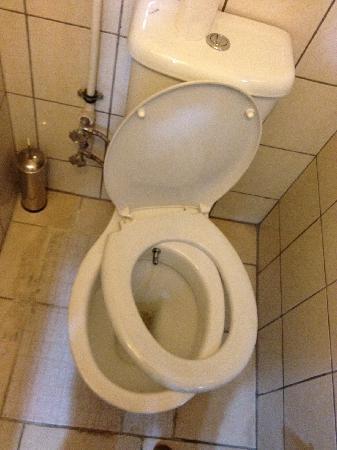 Hotel Abro Necatibey : Toilet in Room