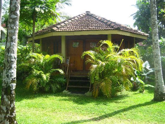 Shangri La Guest House: individual bungalows