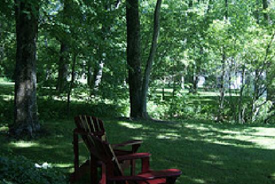 Timber House Resort : Quiet contemplation..